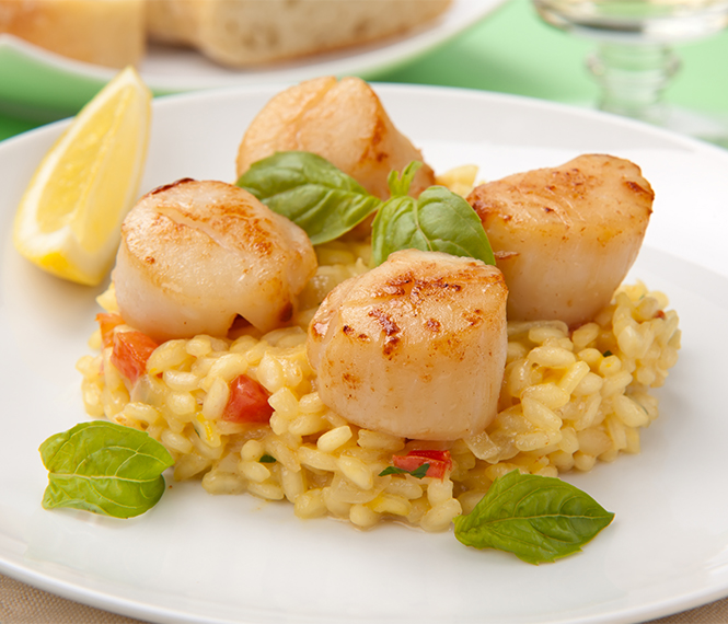 Delicious Scallops Risotto